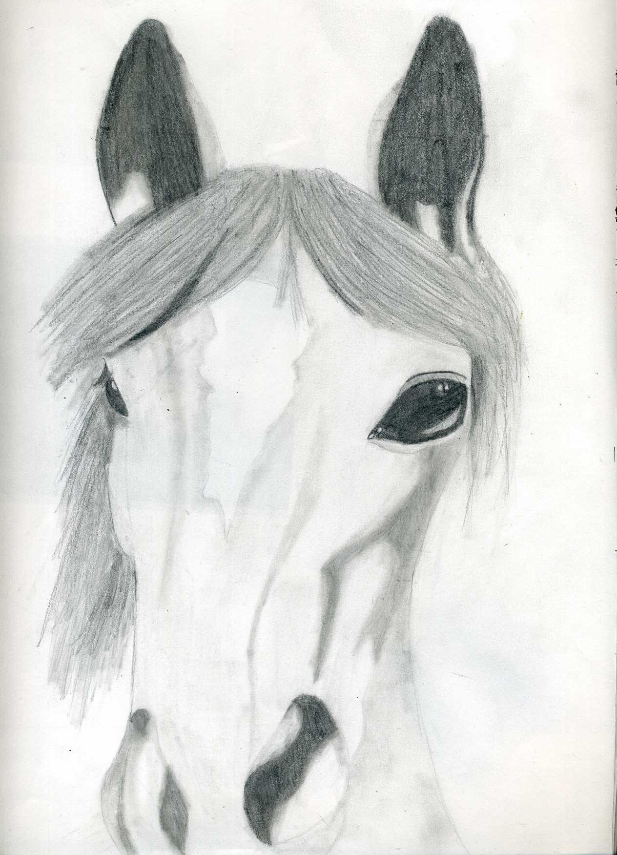 horse sketch art pencils shading Art 2 Pinterest