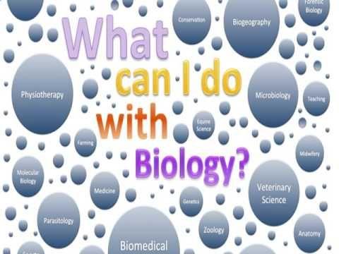 Biology homework help websites