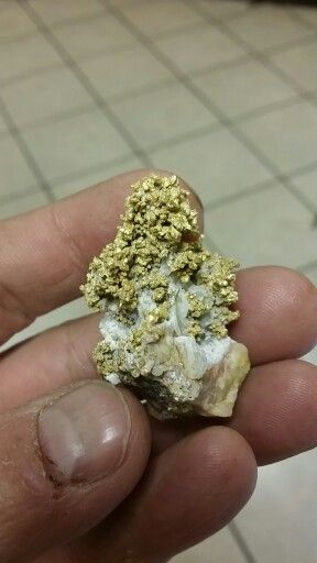 gold nuggets and paydirt since 1999   GOLD PROSPECTING
