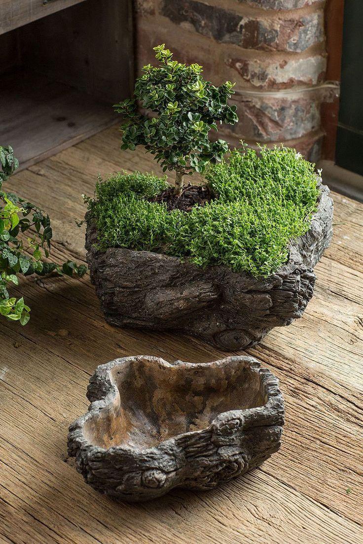 Vagabund Vintage Zement Burled Bark Planter 2er Set MapleNest Garten Deko Garten ideen