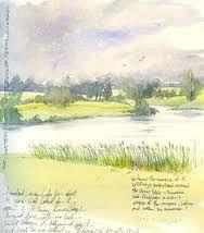 Kuvahaun tulos haulle Amanda Hoskin's sketchbook