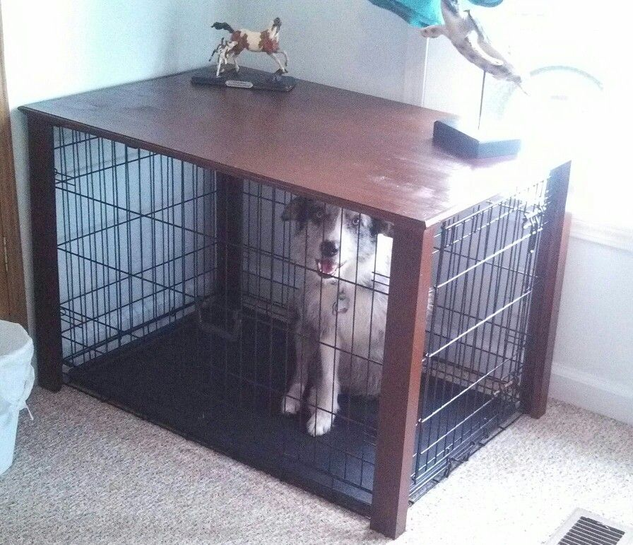 Dog crate table DIY Success! Dog crate table, Dog crate
