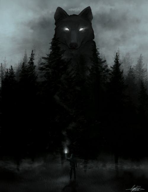 Photo of The shadow wolves
