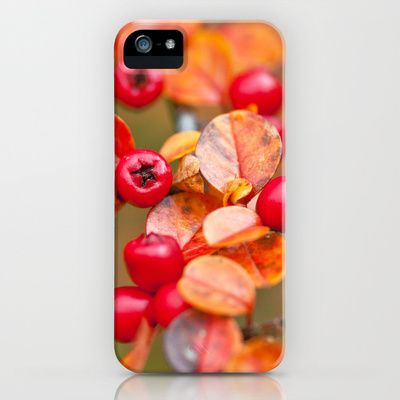 Autumnal Cotoneaster 9379 iPhone Case by metamorphosa - $35.00