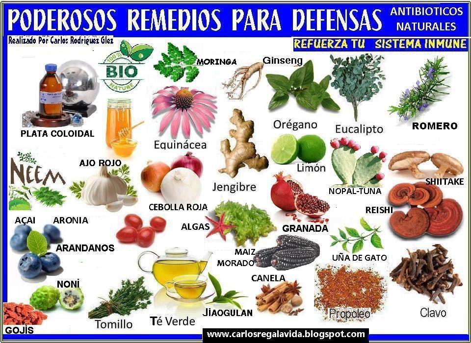 Pin De María Ba En Nutrición Y Salud Hierbas Curativas Nutrición Remedios Naturales