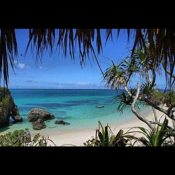 Paradise forex ea