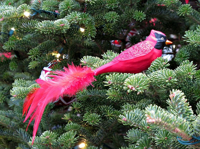 Cardinal Ornament, A Longwood Christmas, Longwood Gardens IMG_1590 A Longwood Christmas, Longwood Gardens, Kennett Square, PA Photograph by Roy Kelley Roy and Dolores Kelley Photographs