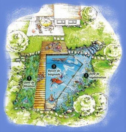 Tpe piscine naturelle am nagement d co ext rieur for Piscine naturelle construction