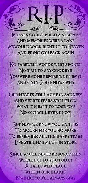 Elegy For My Dear Nephew Who Died Today I Miss You David
