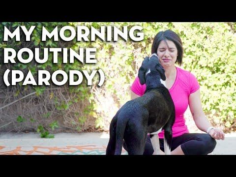 My Morning Routine 2018! (A Parody…) Sketch - Mind Over Munch