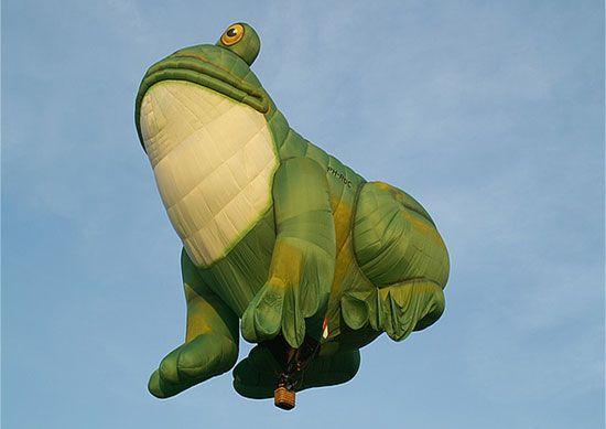 Frog Balloon.... here ya go Sally!!