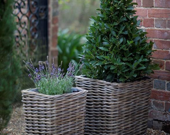 Square rattan planters outdoors flower pots pinterest rattan wicker baskets square rattan garden planters set of 2 workwithnaturefo
