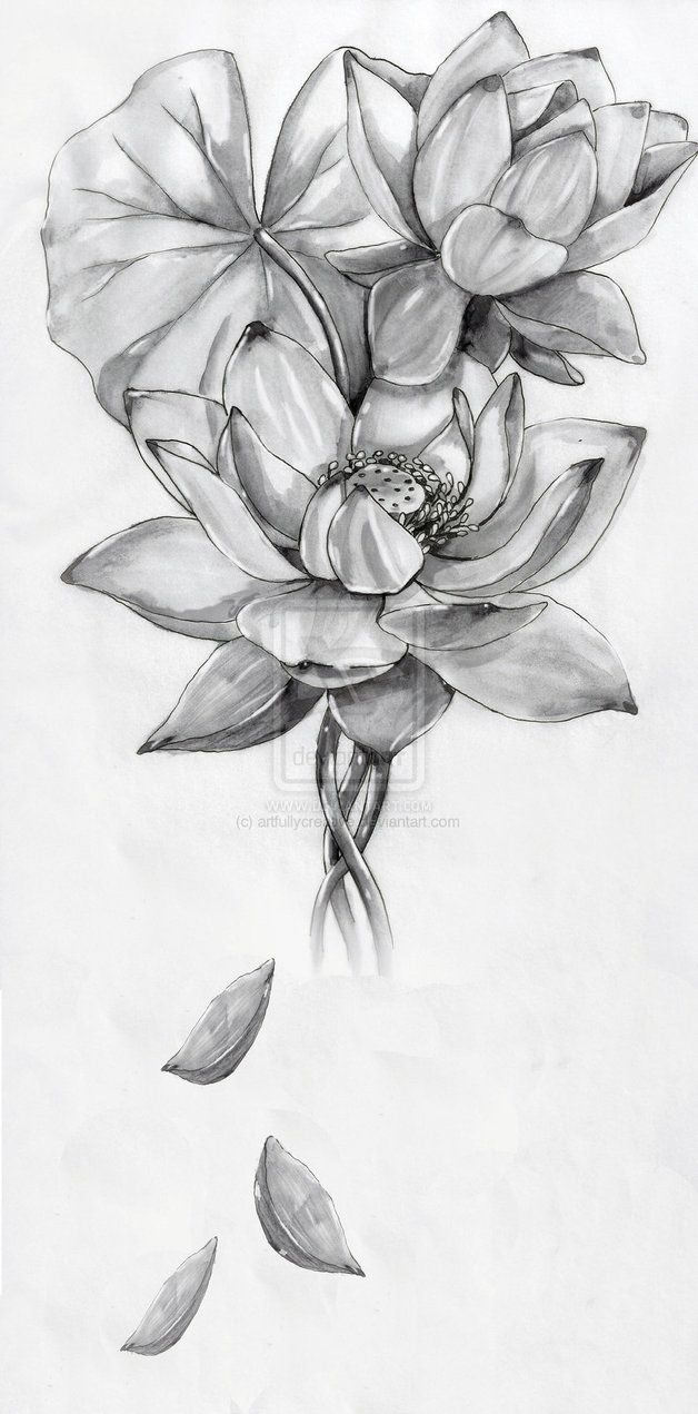 Lotus flower by artfullycreative on deviantart tattoos pinterest lotus flower by artfullycreative on deviantart mightylinksfo