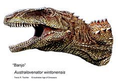 AUSTRALIA DINOSAUR PICTURES: Three New Species Found