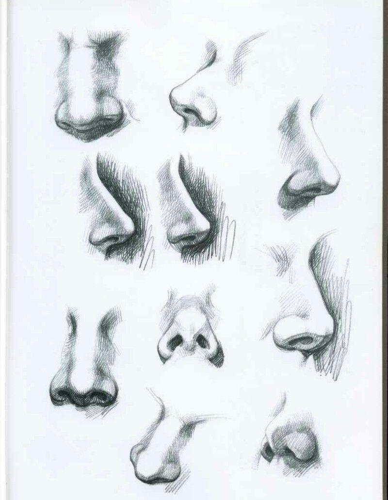 Art studies drawing drawing life drawing drawing practice anatomy drawing drawing