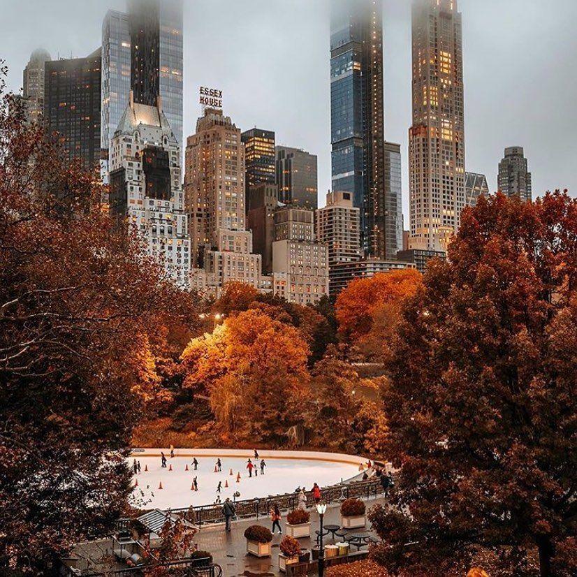 """sita on instagram """"new york 🍂🍁 via onlyclassy 🍂""""  city"""
