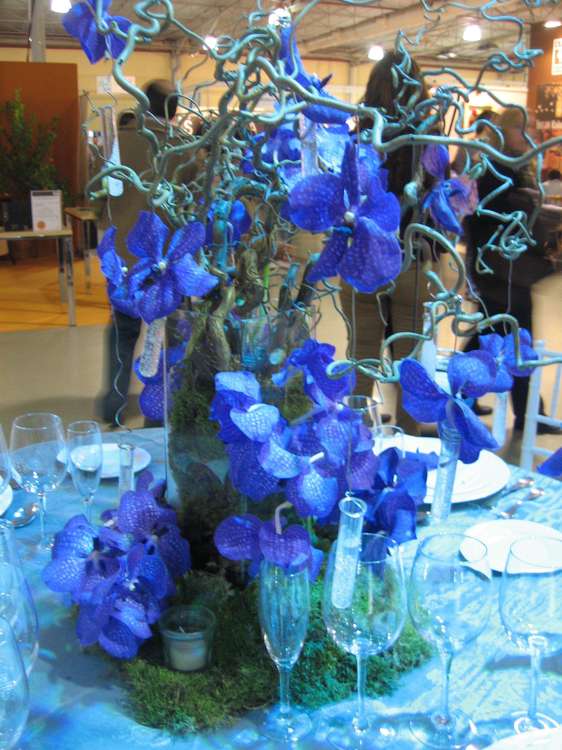 Arreglo Floral Con Orquídeas Azules Arreglos Florales
