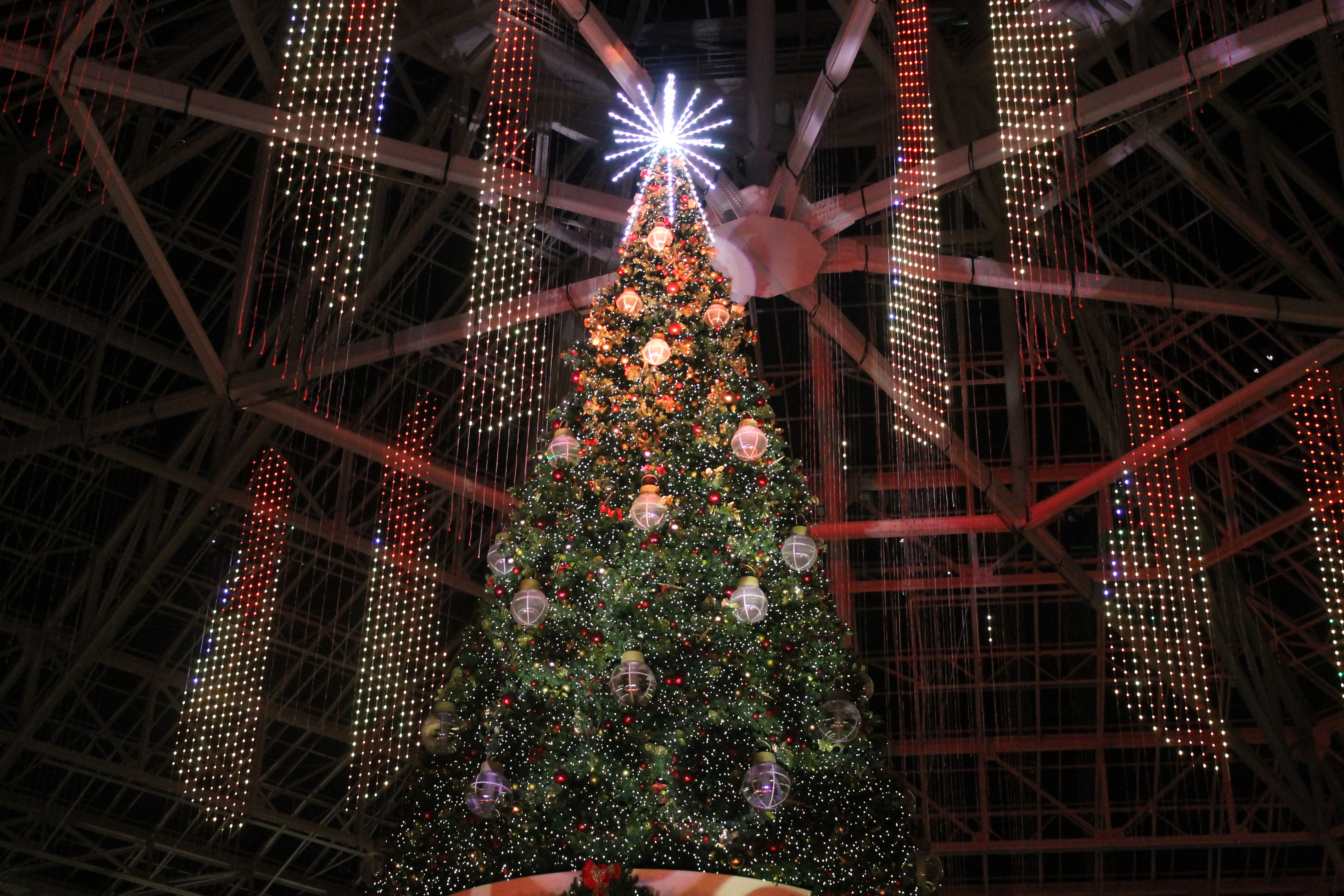 ICE at Gaylord Palms