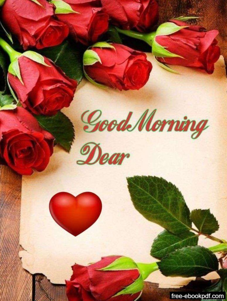 Good Morning Darling Good Morning Roses Morning Rose Good Morning Rose Images Good morning red rose hd wallpaper gif
