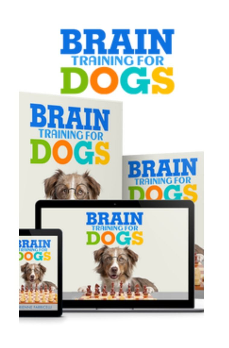 For dog dummies ebook download training free