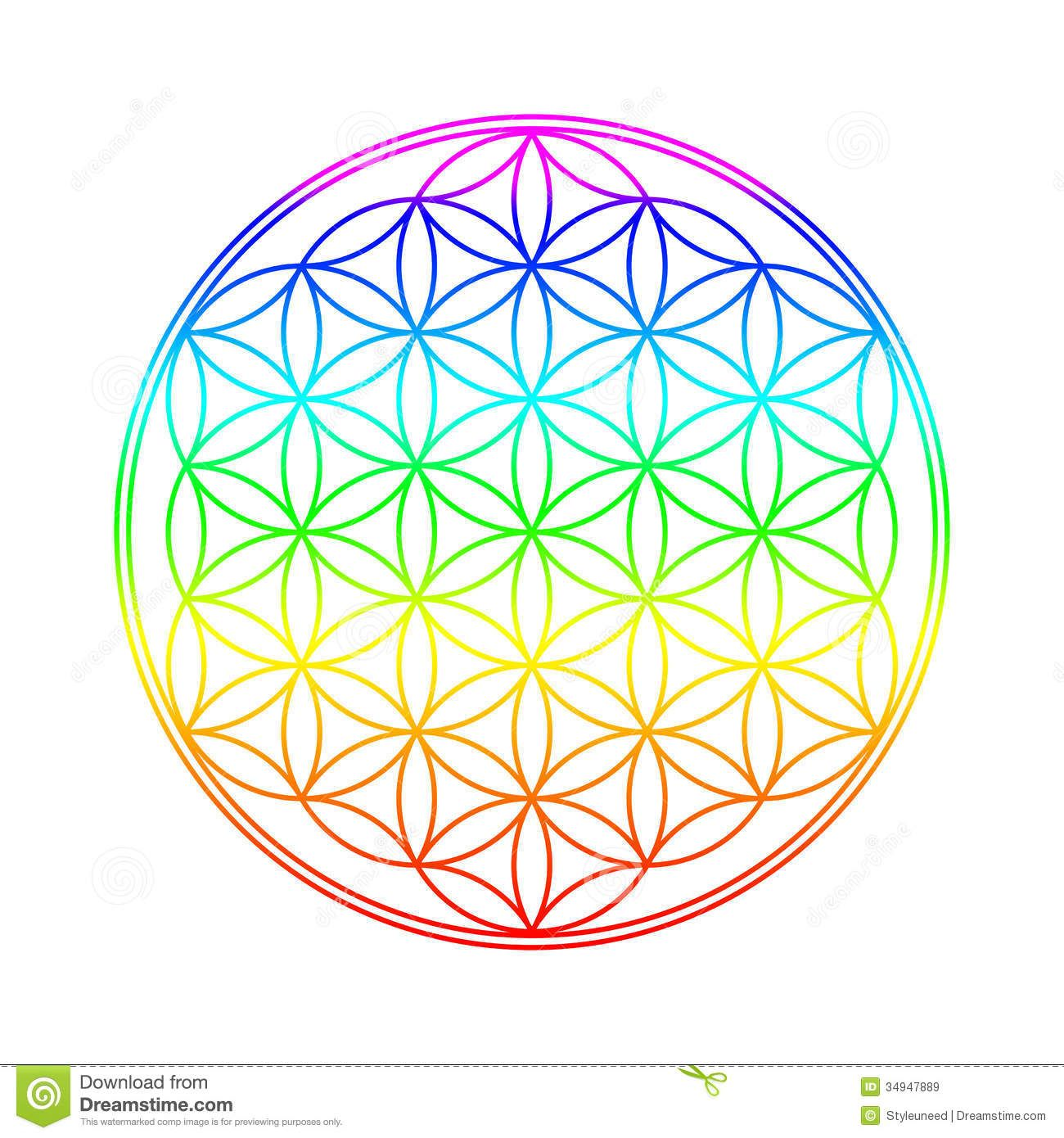 Flower Of Life - Download From Over 46 Million High ...