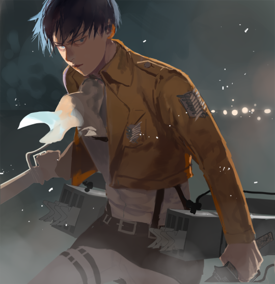 MERYO! Attack on titan anime, Attack on titan hoodie