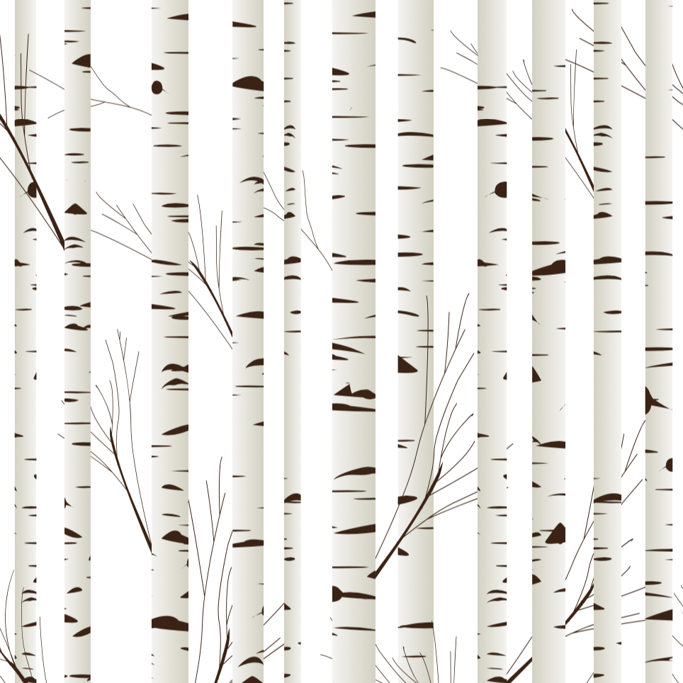 Birch Tree Wallpaper (SelfAdhesive) Birch tree