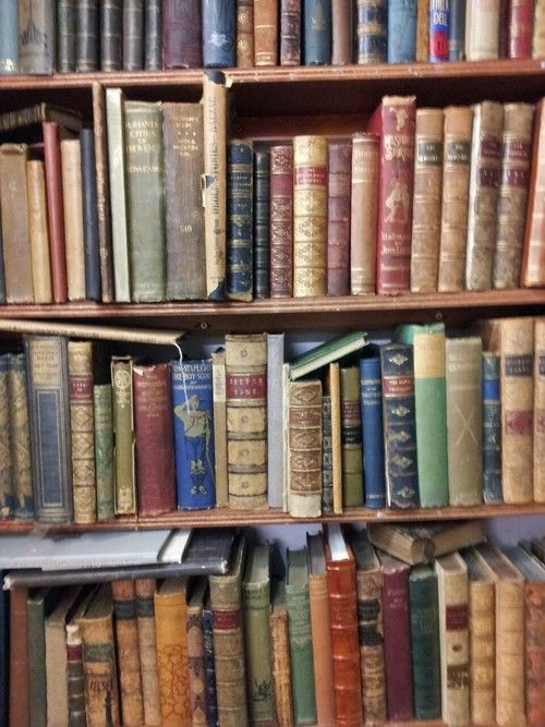 second hand novel book store near me
