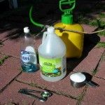 White Vinegar As Organic Weed Killer:  Accidently found out this REALLY does WORK!  And pet friendly!!!