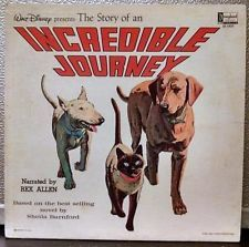 REX ALLEN - The Story Of An Incredible Journey LP Vinyl Disneyland ST-1927 T-95