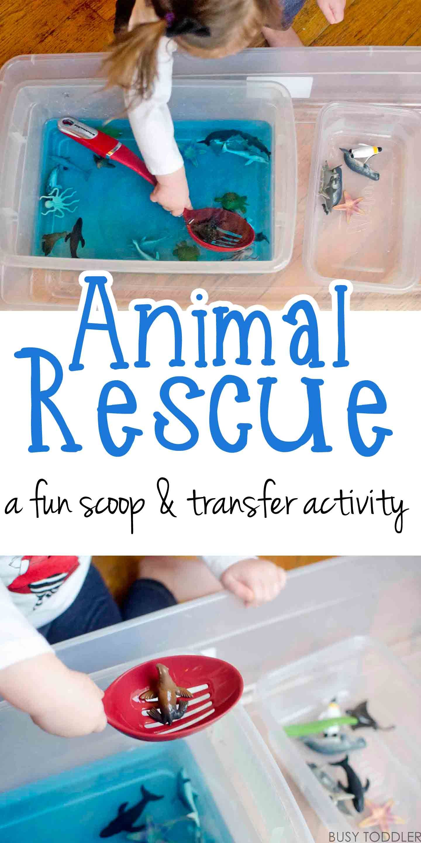 Animal Rescue Transfer Activity | Indoor activities for ...