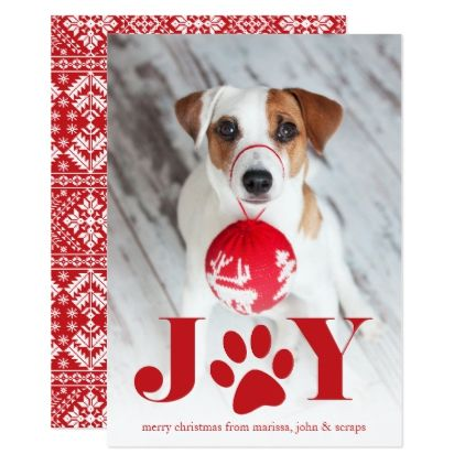 Festive Paws Pet Photo Holiday Card diy cyo customize create