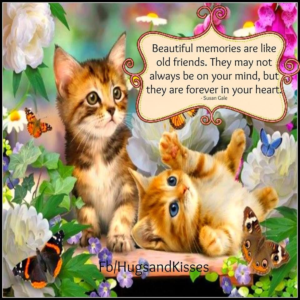 Quotes About Old Friendship Memories Beautiful Memories Are Like Old Friends  Sowing Seeds Of Love