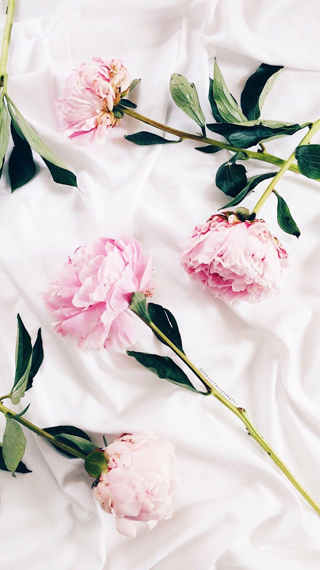 Pink Flowers Iphone Wallpaper Pink Wallpaper Iphone Hipster