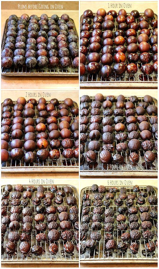 Dried Fruit in the Oven Recipe Dehydrator recipes