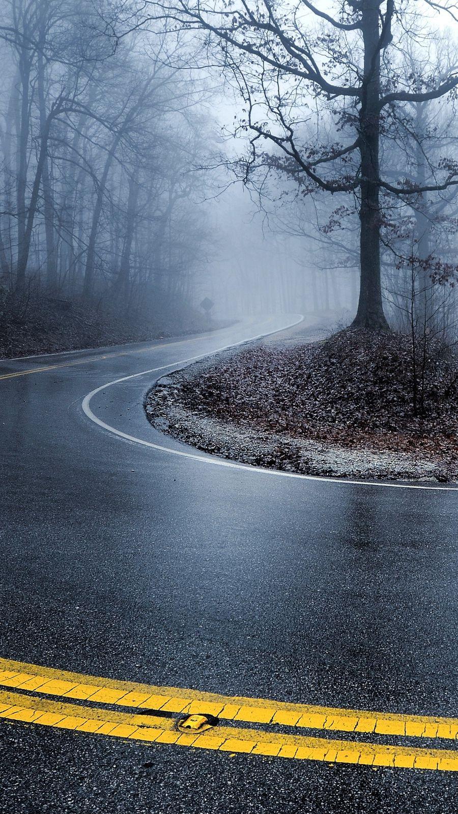 Wallpaper iphone winter - Road Winter Trees Fog Iphone Wallpaper