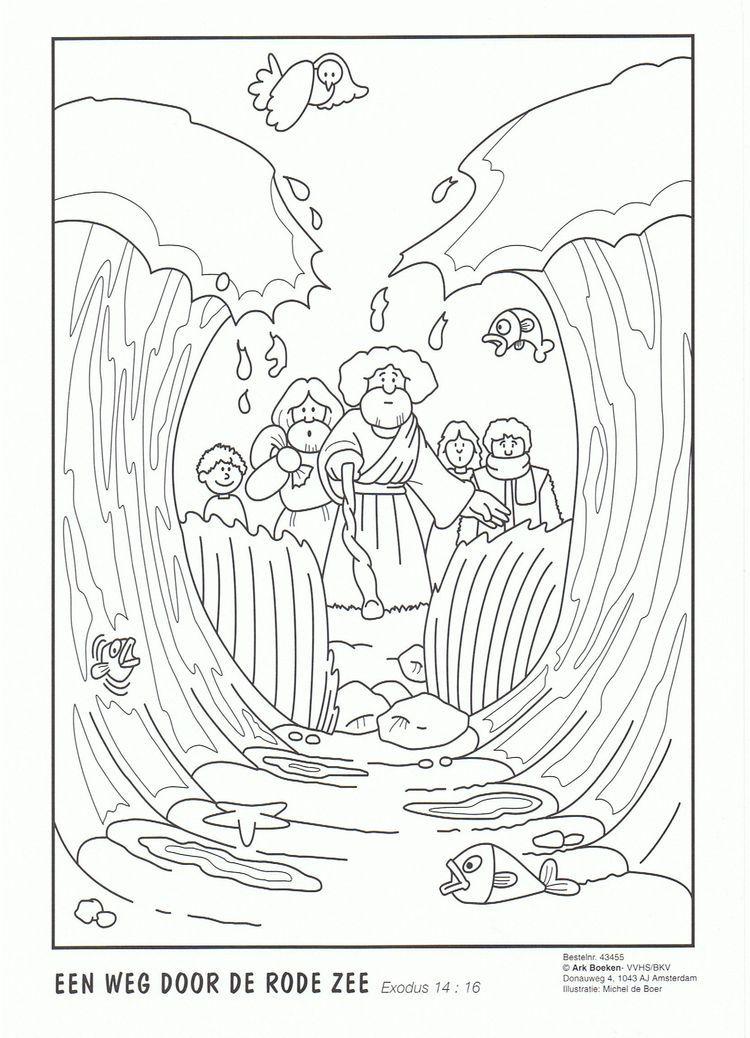 Pin de Luciana Kavedjian en Biblia Niños | Pinterest | Dominical ...