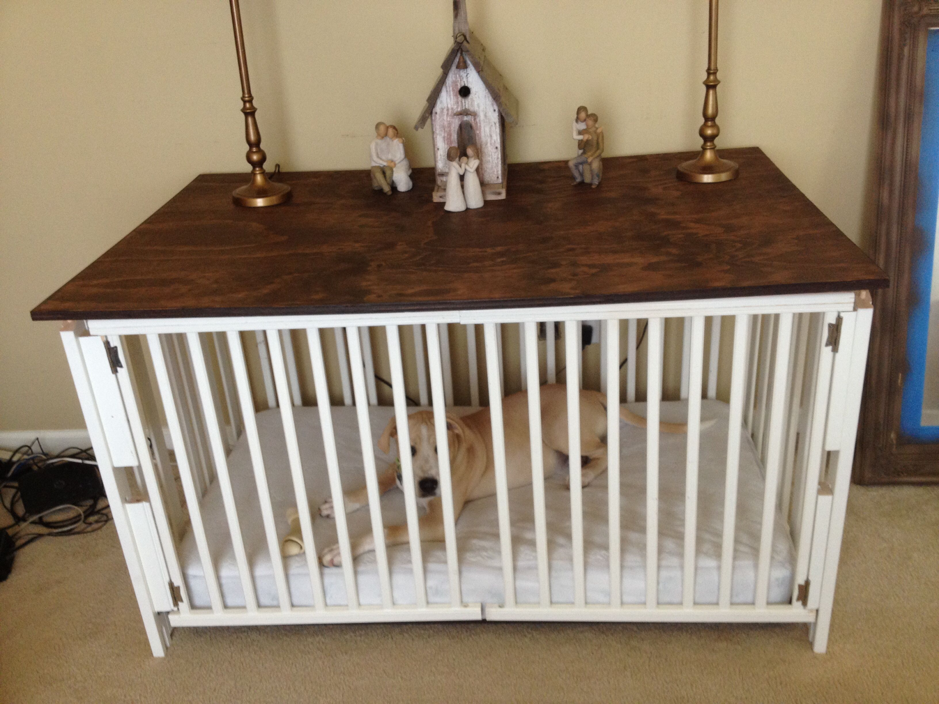 Baby Crib Dog Cage Goldenacresdogs Com