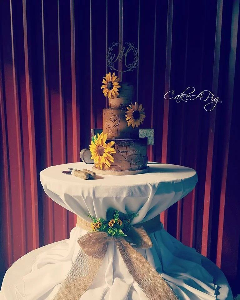Rustic Buttercream Tree Bark Cake With Edible Sunflowers Bakery Tampa, FL