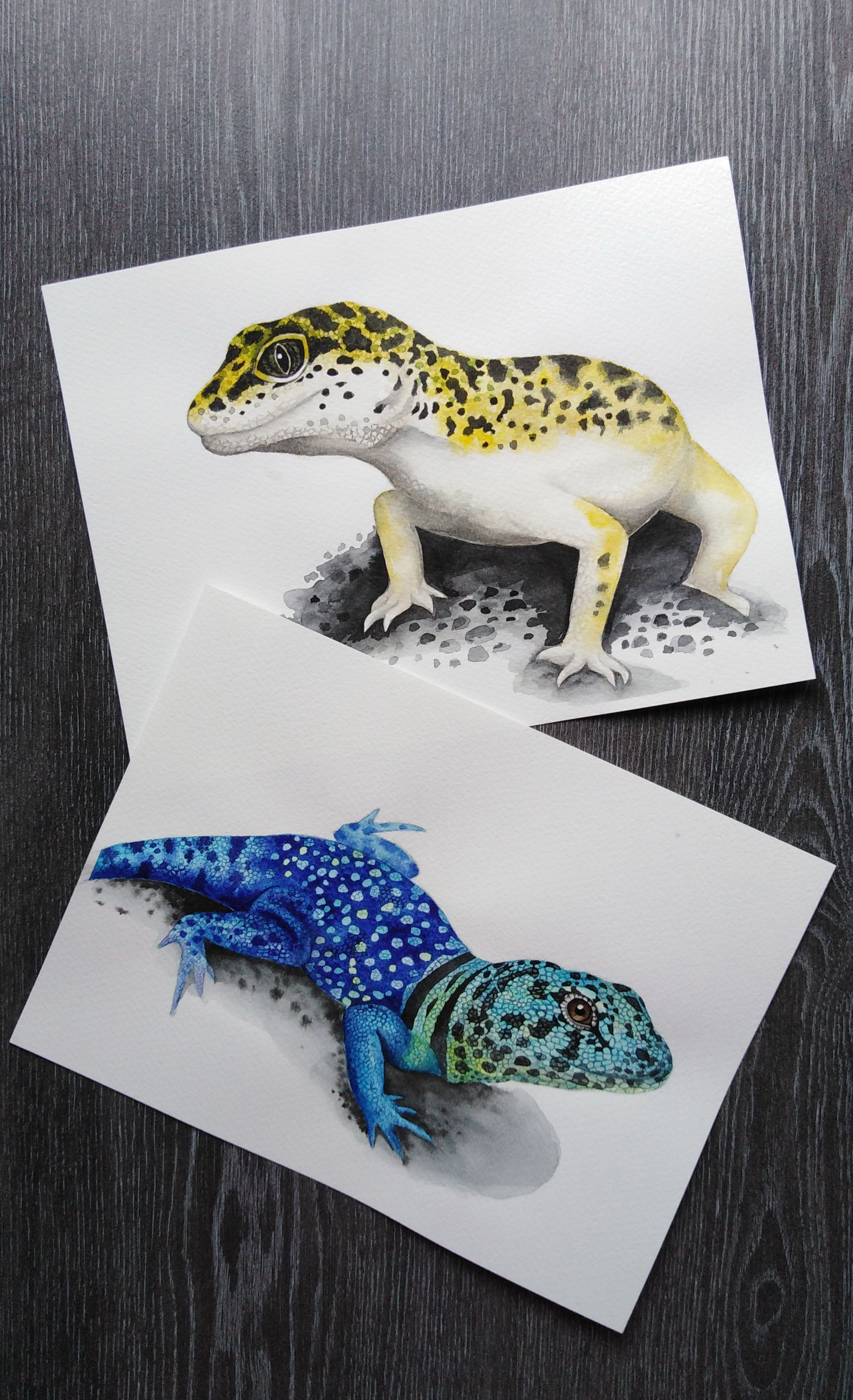 Blue Lizard Print Colorful Animals Realistic Drawing Lizard Wall Art Reptile Drawing Blue Lizard Reptile Lizard Pi Colorful Animals Realistic Drawings Reptiles