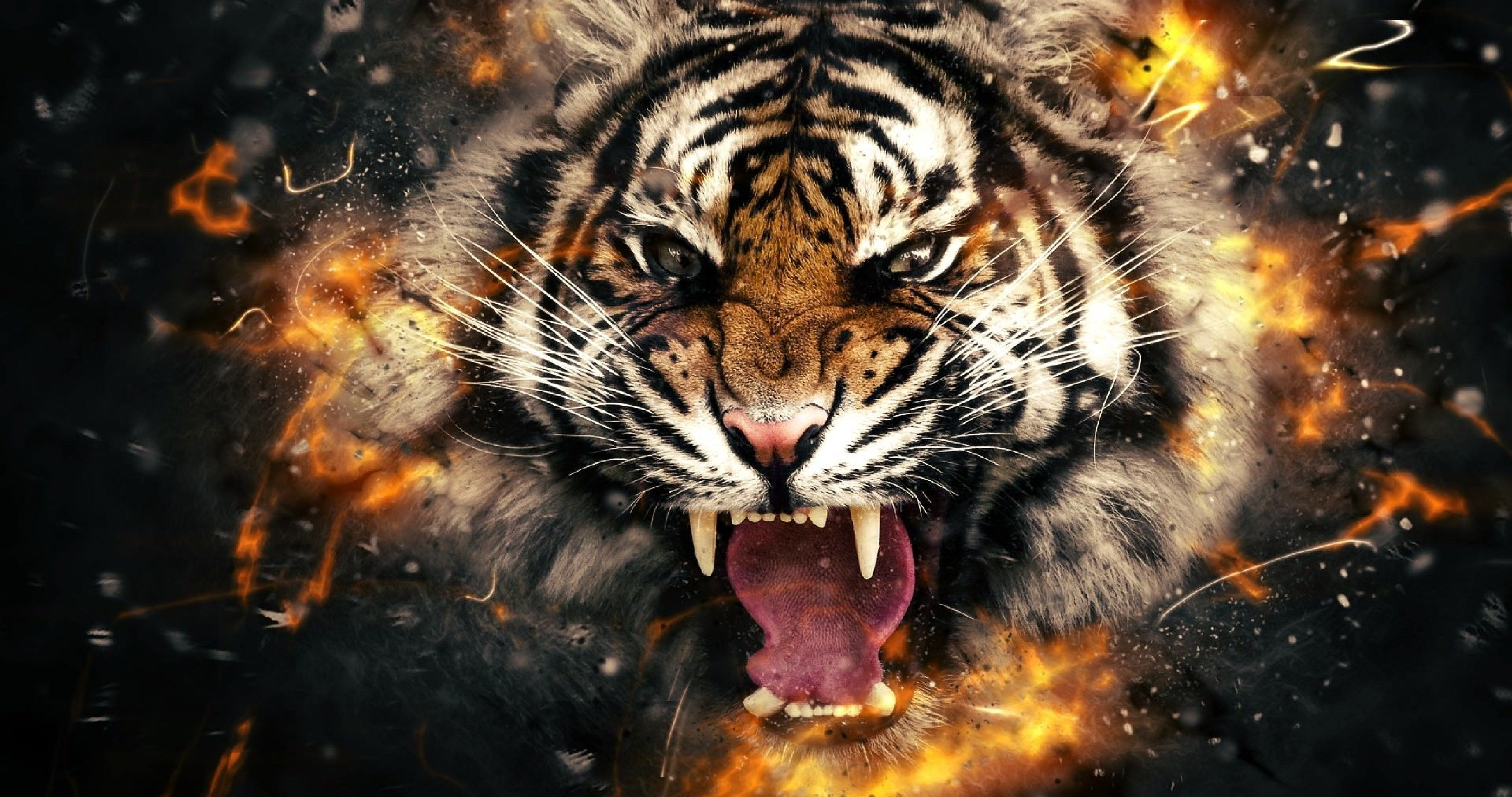 Ultra Hd Wallpapers For Iphone 77488 Wild Animal Wallpaper Tiger Wallpaper Tiger Photography