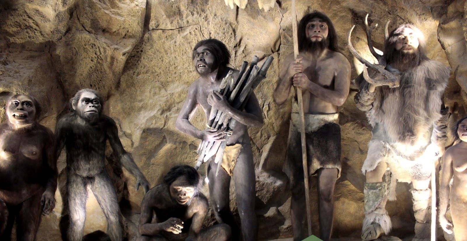 New Findings Show More Contact Between Prehistoric Humans