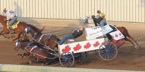 Stop The Horrific Chuckwagon Races At The Calgary Stampede