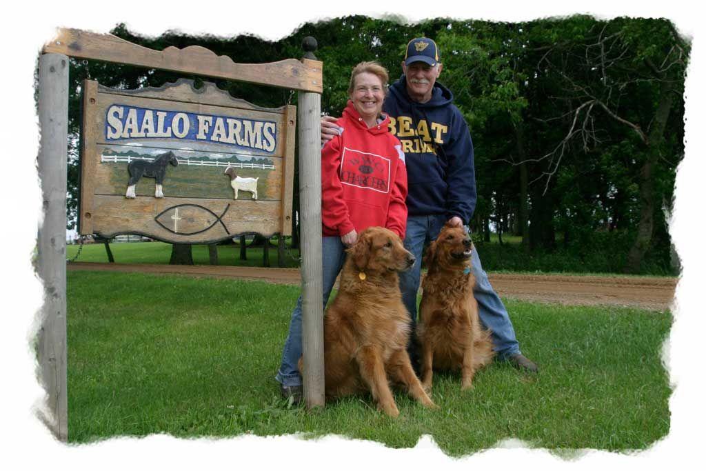 Saalo Farms Pet Boarding Pet Boarding Pets Dogs
