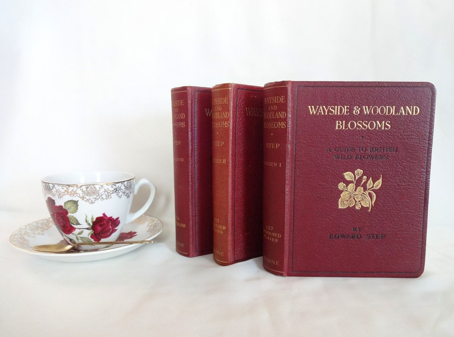 Wayside and Woodland Blossoms A Guide To British Wild Flowers In 3 Volumes / 1930 Warne and Co. / 100s of Beautiful Botanical Illustrations by BumperBoxofDelights on Etsy