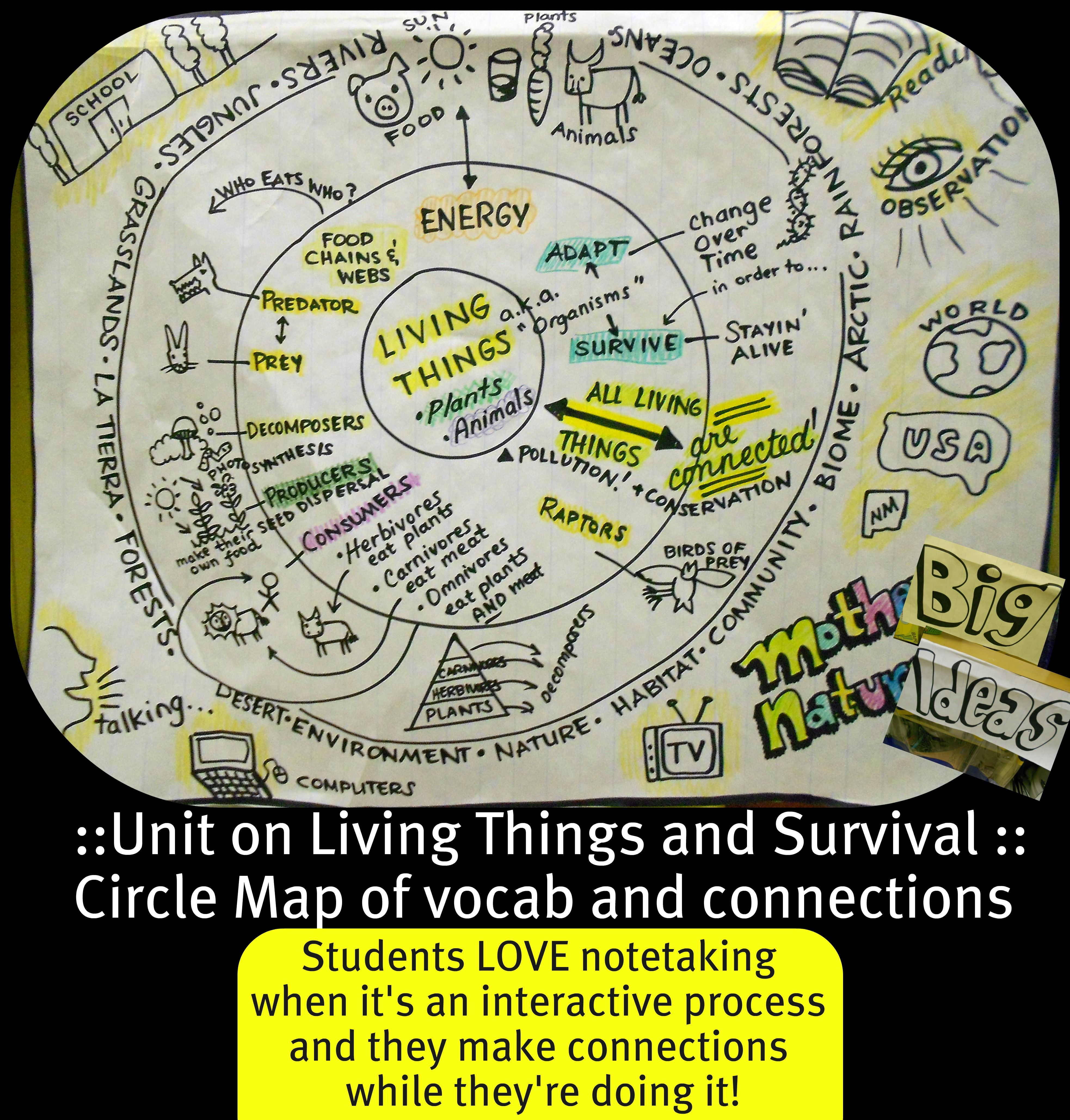 Living Things Circle Map Hmm I Wonder How This Is Done Thinking Maps Circle Map Thinking Map