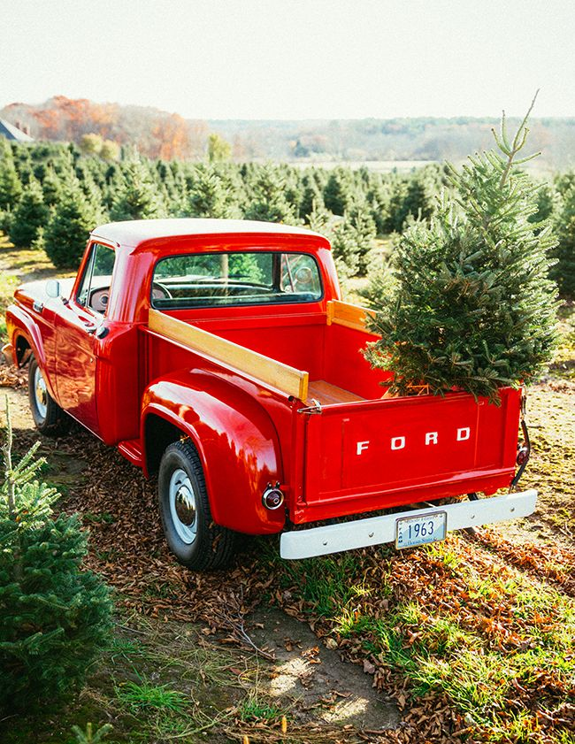 Turquoise Teale Christmas Car Red Truck Christmas Tree Farm