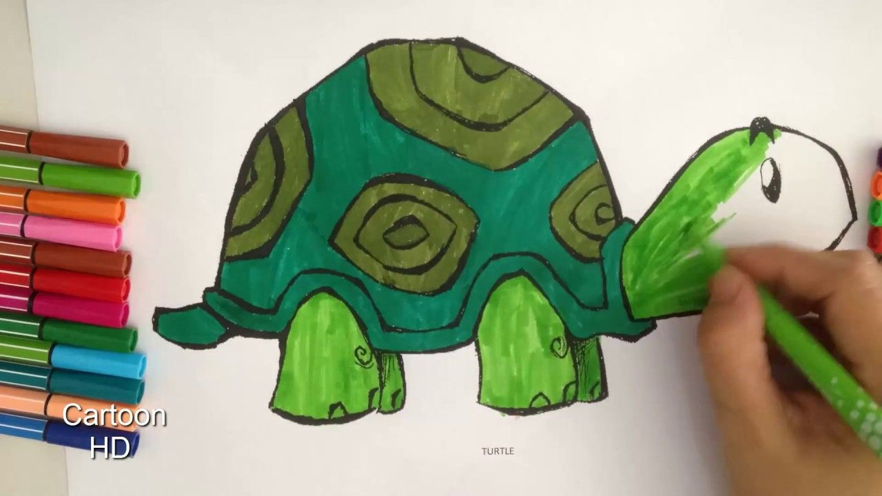 Turtle Coloring Pages For Kids - Turtle Coloring Pages - Cartoon HD ...