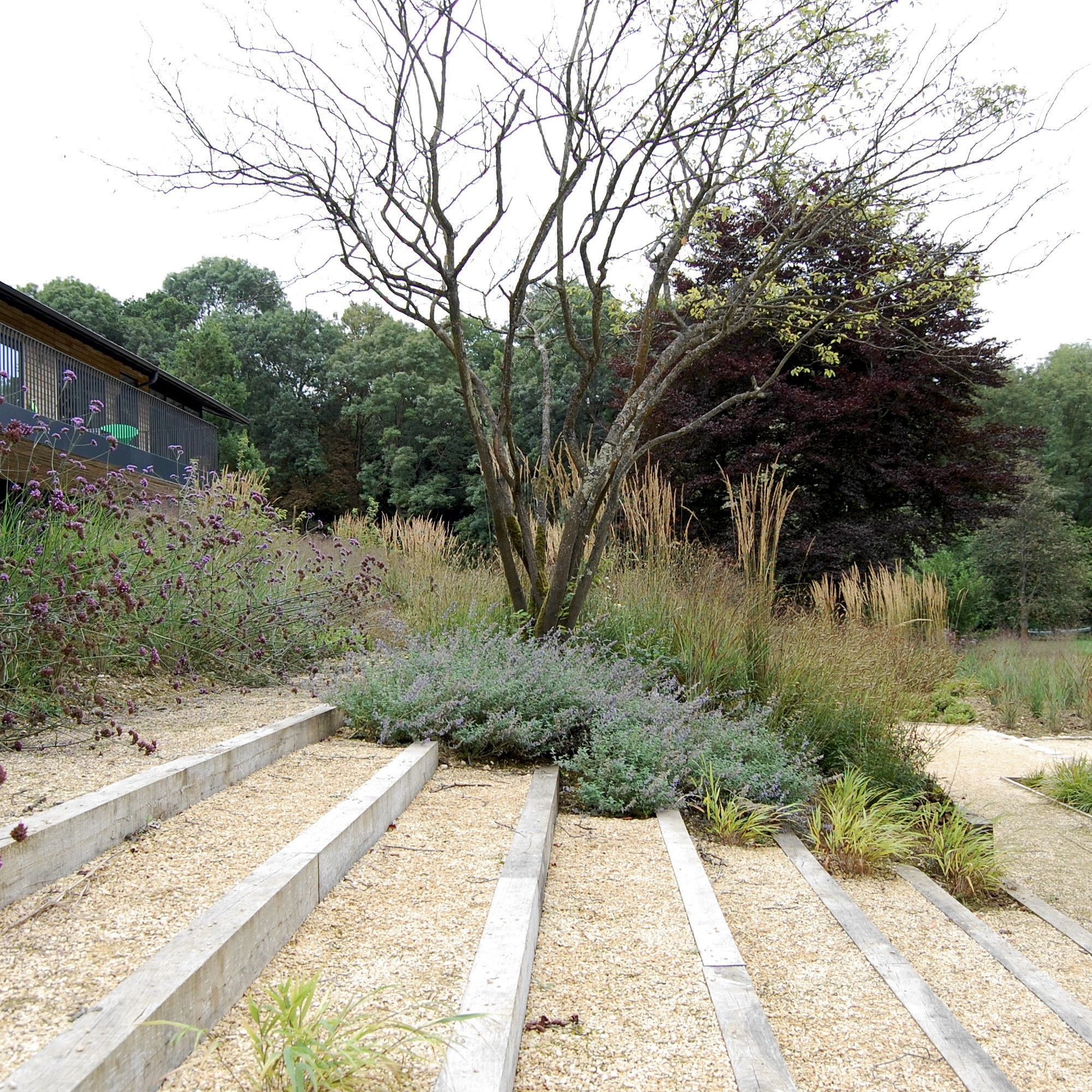 Nicholas dexter studio jardines pinterest paisajismo for Paisajismo jardines rusticos