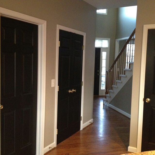 I See A White Builder Grade Door And I Want To Paint It Black Tricorn Black